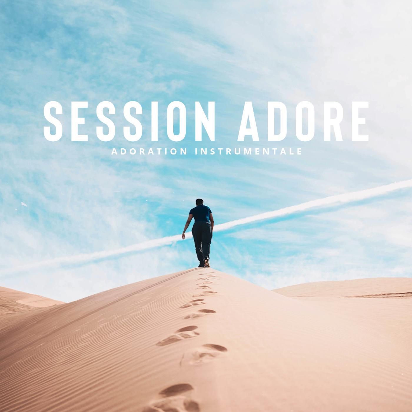 Session ADORE - Persévère - Bruno PICARD